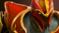 dragon_knight_sb